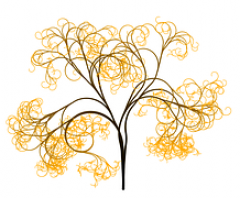cropped-tree-51354__180.png